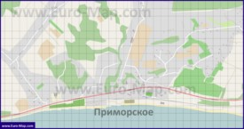 Подробная карта села Цкуара с улицами